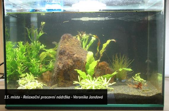 Soutěžní výstava miniakvárií Brno