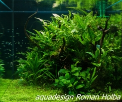 Roman Holba - Akvárium Š 70 x H 70 x V 70 cm