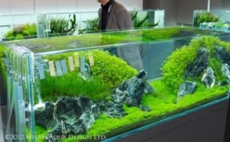 Rescape 180cm nádrže v Nature Aquarium Gallery